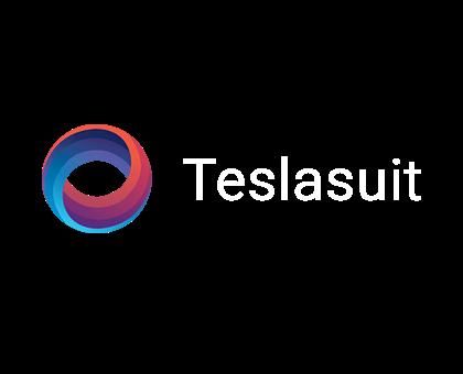 Teslasuit